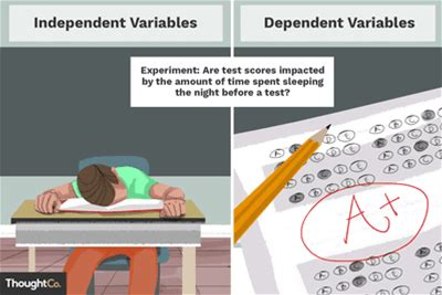 independent variable and the dependent variable