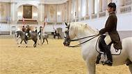 Spanish Riding School Vienna Morning Exercise Entrance Ticket