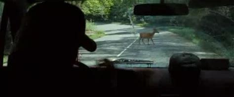"""The Descent: Part 2 -- """"Deer in Road"""" from from The Descent: Part 2"""