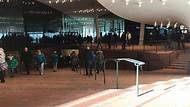 Elbphilharmonie-Plaza guided walking tour