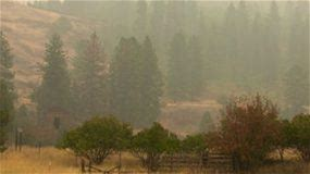 Stay Safe After a Wildfire