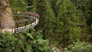 Grouse Mountain & Capilano Suspension Bridge Park