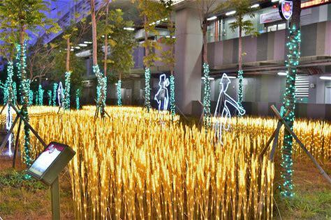 慶「豐」年賀「原」宵 稻穗燈、白鷺鷥點亮豐原火車站