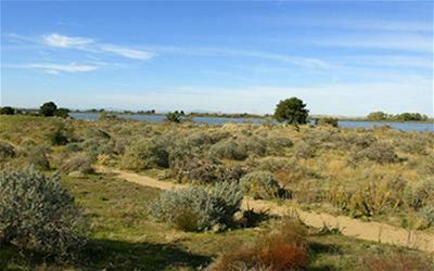 Docent Tours of the Antioch Dunes