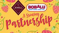 Bobalu Berries to Build Branding with Cindy Jewell's SCJewell, Inc.