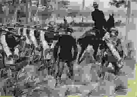 U.S. troops on the march in Cuba during the Spanish-American War, 1898, drawing by William J. Glackens.
