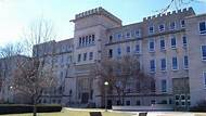 How Competitive Is Bradley University's Admissions Process?