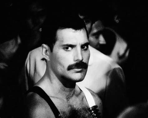 Freddie - Freddie Mercury Photo (34872038) - Fanpop