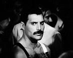 Freddie - Freddie Mercury Photo (34872038) - Fanpop