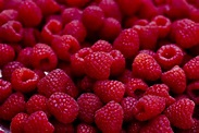 raspberry - définition - What is