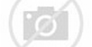 LAN and SAN Connectivity for a Cisco UCS Blade - Cisco