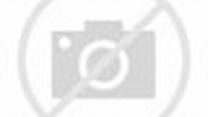 BBC - Alan Yentob, Former Creative Director - Inside the BBC