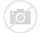 Hyenas on the Hunt | A pack of three hyenas, a mom and two ...