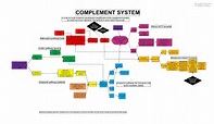 Complement system proteins; Complement Proteins