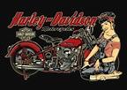 vintage harley davidson pin up girls | David Vicente: Pin ...