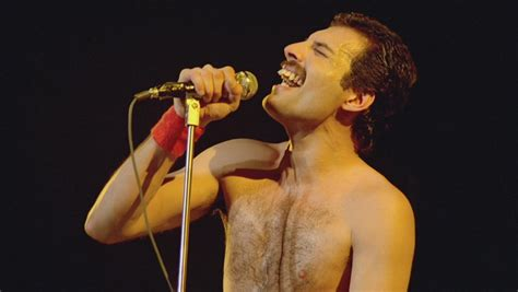 Freddie Mercury images Freddie HD wallpaper and background ...