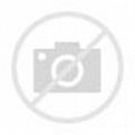 Albert Francis Capone - Al Capone a jeho gang - POSTAVY.cz