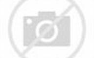 amazon logo amazon logo amazon logo amazon logo share amazon