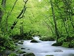 ภาพวิวธรรมชาติสวยๆ nature ...