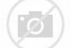 FBI Accused Of Whitewashing Saudi Involvement In 9/11 Attacks Is ...