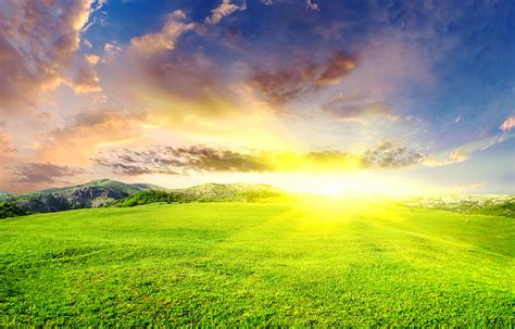 Beautiful landscape with green field and sun - Khoirulpage