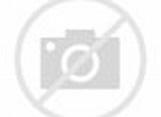 Barack Obama | Famous Face