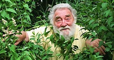 What Happened To David Bellamy? | Vaccination Information ...