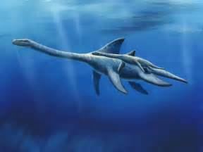 Baby plesiosaur by NetRaptor on DeviantArt