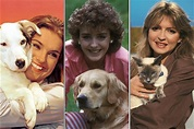 BBC News - In pictures: Blue Peter pets