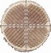 What is Quarter Sawn Wood? | Hardwood Distributors