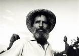 books, the universe, and everything | The Journey Home by Edward Abbey