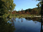 7 Peaceful Hikes of the Great Swamp in New York – Friends ...