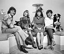 John Noakes' Blue Peter co-star VALERIE SINGLELTON pays a ...
