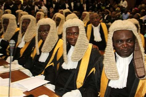 CJN gags NBA President, others at SANs swearing-in ...