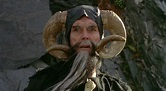 LE VIDEO SHELF: Tim The Enchanter