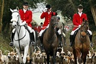 Conservative plan to repeal the fox hunting ban is a waste ...