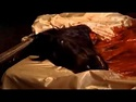 Godfather - Horse Head In The Bed Scene - YouTube