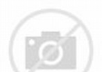 Butt of Iconic Saddam Hussein Statue for Sale