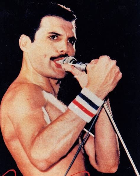 Freddie - Freddie Mercury Photo (32455777) - Fanpop
