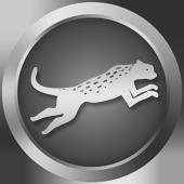 4Runner Running Wild (Silver)