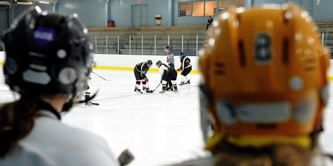 Minor hockey now costs more than horseback riding — study