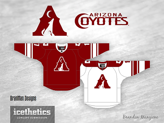 Arizona Coyotes new official name for Phoenix, starting in 2014-15