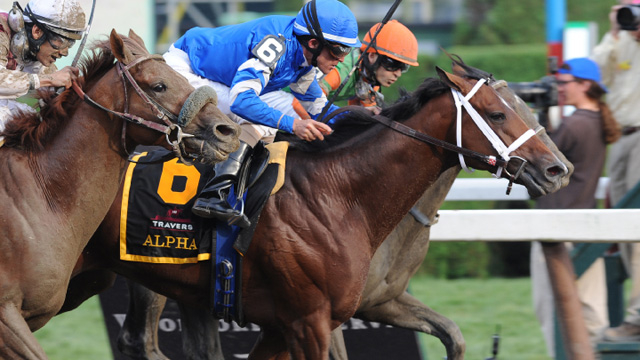 Horse race finishes in incredible dead heat (PHOTOS)