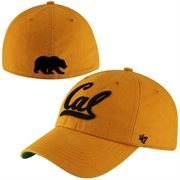 Cal Bears Franchise Fitted Hat - Yellow