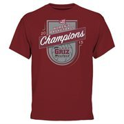 Men's Montana Grizzlies Maroon 2015 Big Sky Women's Basketball Conference Tournament Champions T-Shirt