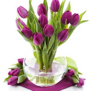 Flowers Tulips - Free high quality background pictures