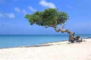 Most Beautiful Beaches Of Aruba – Travel Around The World ...